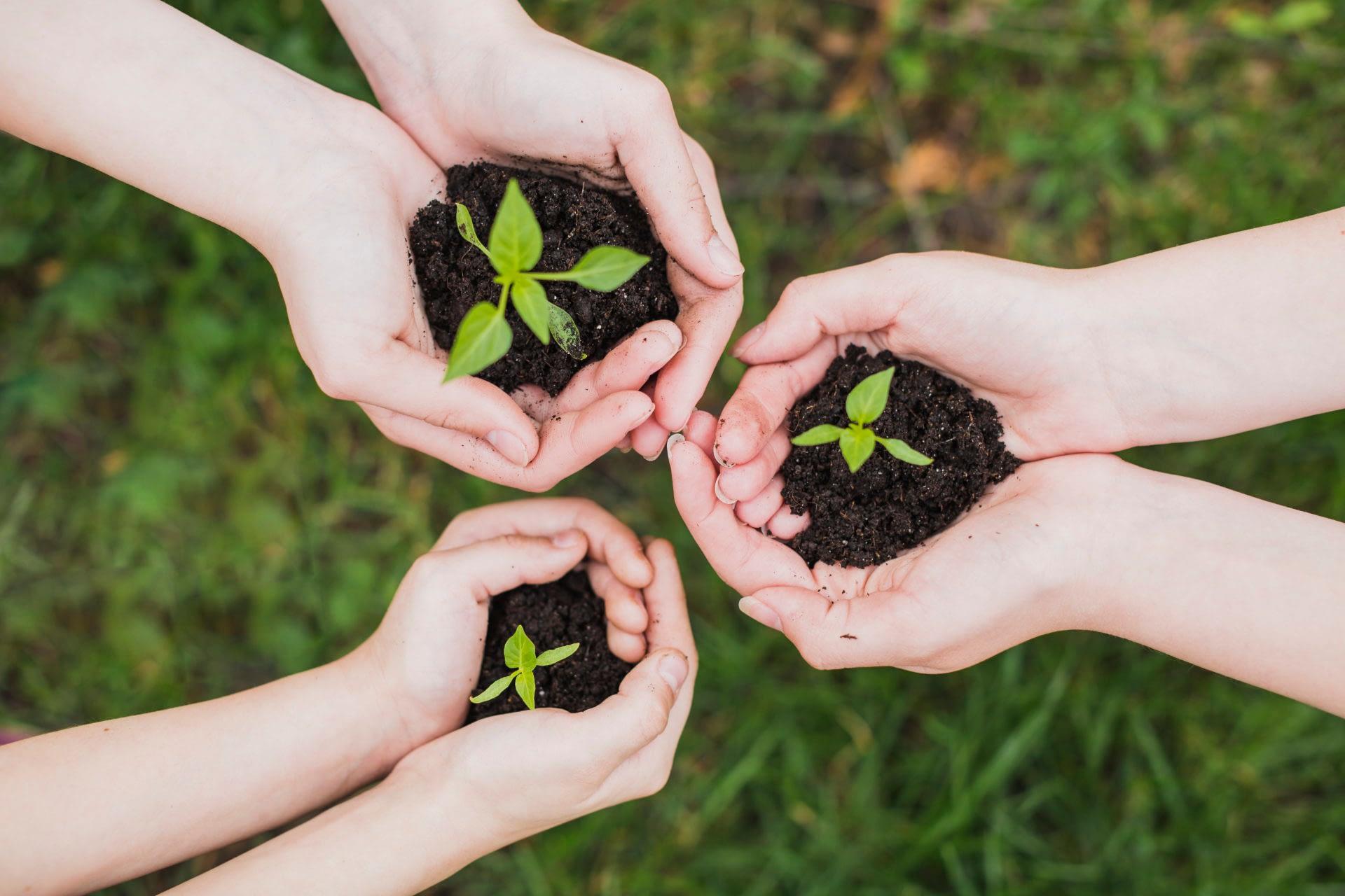 protección medio ambiente